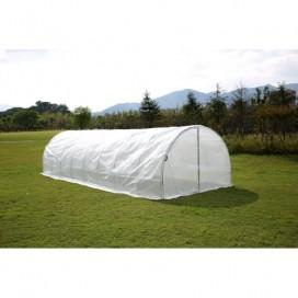 Agricultural Greenhouse PREMIUM 8,0MTx3,0MTx2,3MT
